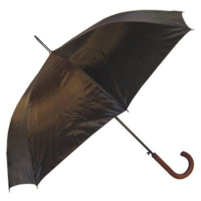 Euro Umbrella Image 2