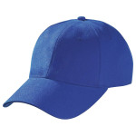product image 8 | Heavy Brushed Cotton Cap