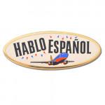 Hablo Espanol Pins
