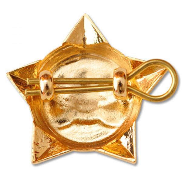 Star Pin Badges