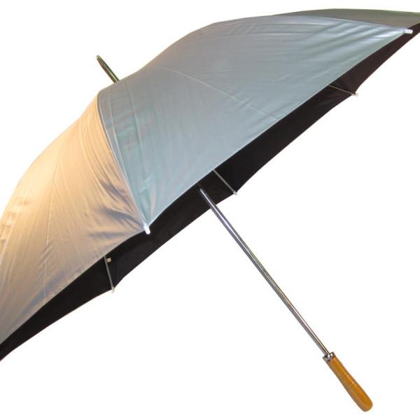 Par Silver Umbrella